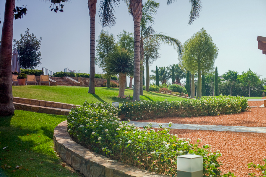 landscaping-projects (3)